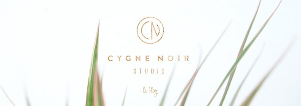 Cygne Noir Studio le blog